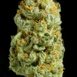 critical-cheese_product_full