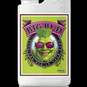 an big bud