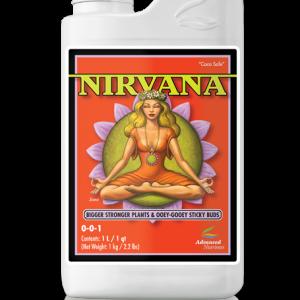 an nirvana
