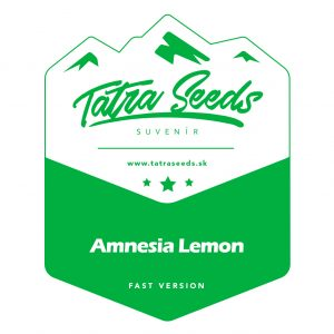 AMNESIA LEMON FAST VERSION - TATRA SEEDS