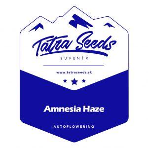 AUTO AMNESIA HAZE - TATRA SEEDS