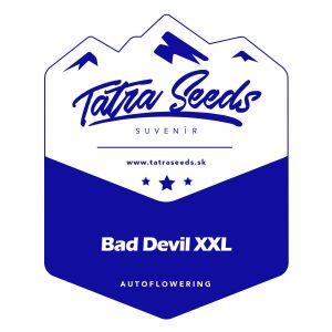 AUTO BAD DEVIL - TATRA SEEDS
