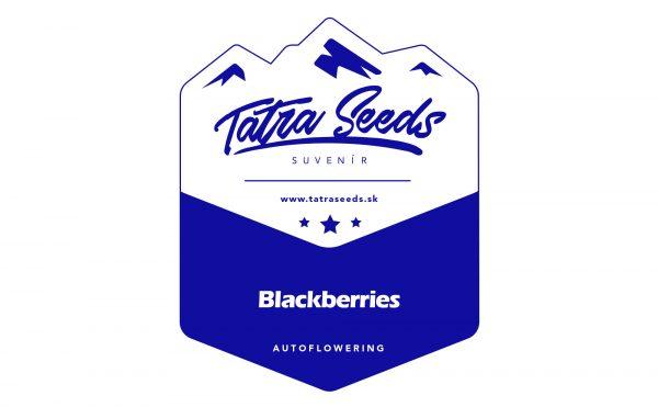 AUTO BLACKBERRIES - TATRA SEEDS