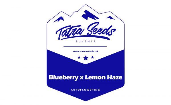 AUTO BLUEBERRY x LEMON HAZE - TATRA SEEDS