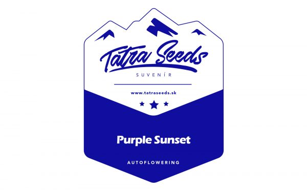 AUTO PURPLE SUNSET - TATRA SEEDS