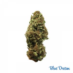 CBD Blue Dream