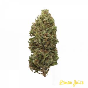 CBD Lemon Juice