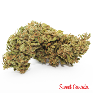 CBD Sweet Canada